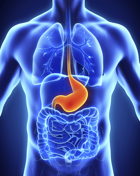 Colon Hydrotherapy | Therapy Center of Grand Rapids